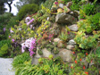 Gallery: The Isles of Scilly - Abbey Gardens on Tresco