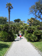 Images: The Isles of Scilly - Abbey Gardens on Tresco
