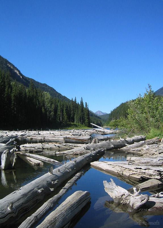 Canada 2006 - Logs