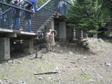 Canada 2006 - Big Horned goat.