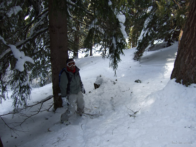 Schladming, Austria - Mukki taking on off-piste shortcut through some trees.