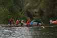 Wargrave and Shiplake 2008 - The Ronettes paddling to the top of the course, showing us how it's supposed to be done.