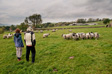 Pics: Askrigg - Mum and Tom discussing sheep